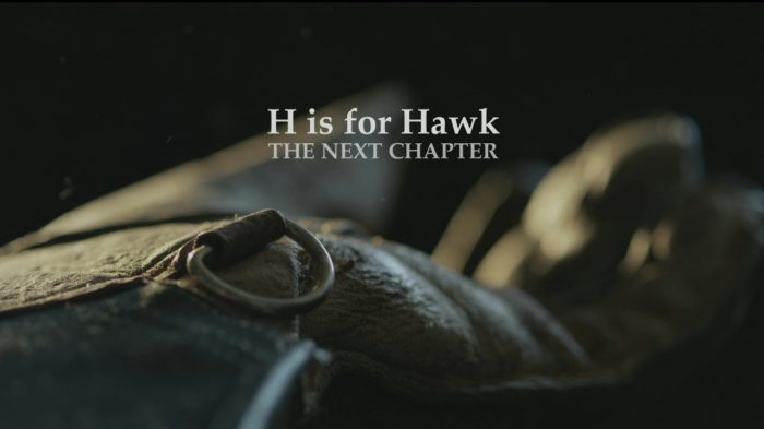 H is for Hawk: The NextChapter